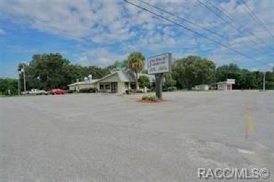 Floral City Commercial For Sale: 8370 S Florida Avenue