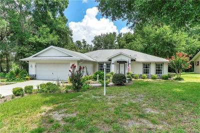 Hernando Single Family Home For Sale: 1405 E Silver Thorn Loop