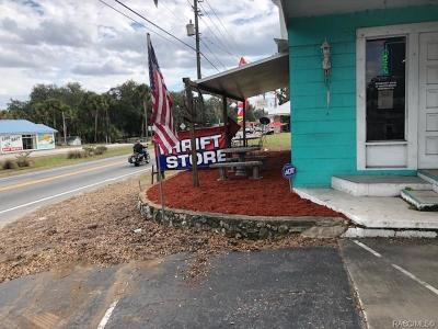 Citrus County Commercial For Sale: 2746 N Florida Avenue