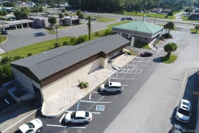 Citrus County Commercial For Sale: 917 Three Sisters Springs Trail