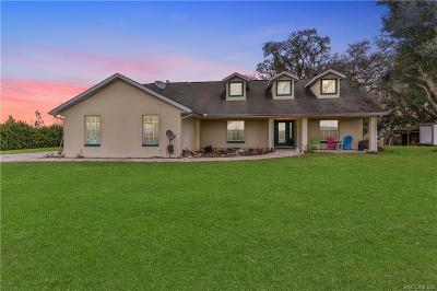 Floral City Single Family Home For Sale: 8780 Derby Oaks Drive