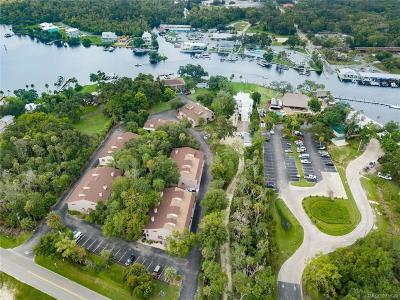 Homosassa Condo/Townhouse For Sale: 5155 S Gray Pelican Way