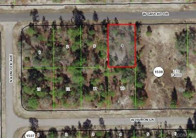 Citrus County Residential Lots & Land For Sale: 2872 W Gaucho Drive