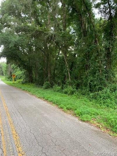 Citrus County Residential Lots & Land For Sale: 4722 S Silver Fox Terrace