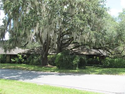 Citrus County Commercial For Sale: 1255 N Vantage Point Drive
