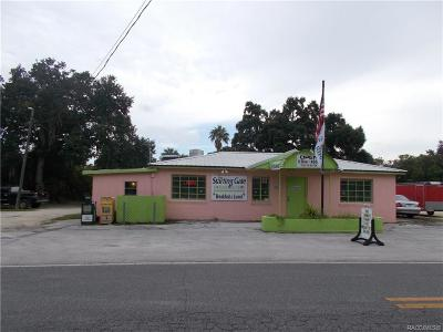Citrus County Commercial For Sale: 10591 W Yulee Drive