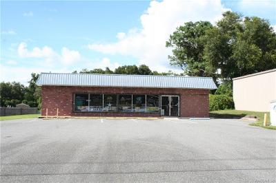 Citrus County Commercial For Sale: 6011 E Turner Camp Road