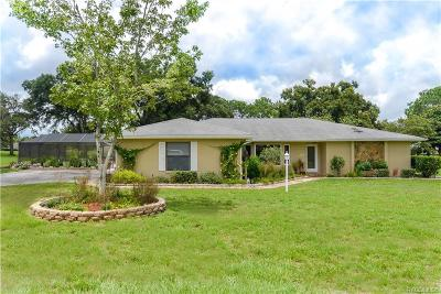 Hernando Single Family Home For Sale: 205 E Falconry Court