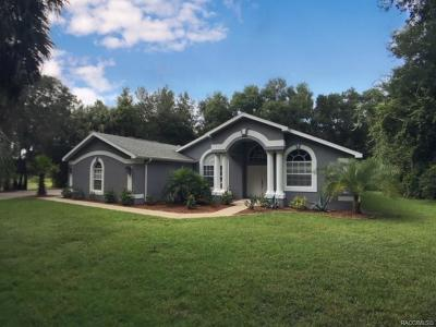 Crystal River Single Family Home For Auction: 9030 W Chata Place