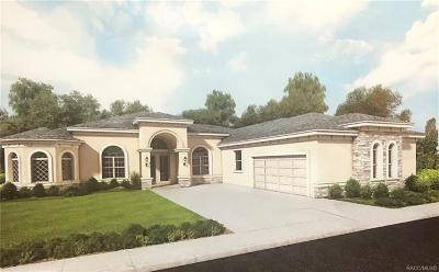 Lecanto FL Single Family Home For Sale: $490,000