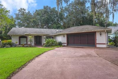 Hernando Single Family Home For Sale: 3051 N Chandler Drive