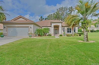 Citrus Hills - Terra Vista Single Family Home For Sale: 1107 W Beagle Run Loop