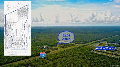 Homosassa Residential Lots & Land For Sale: 11000 S Suncoast Boulevard