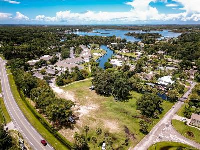 Crystal River Residential Lots & Land For Sale: 9151 W Fort Island Trail