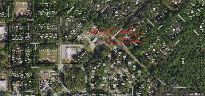 Homosassa Residential Lots & Land For Sale: 8145 W Fern Place