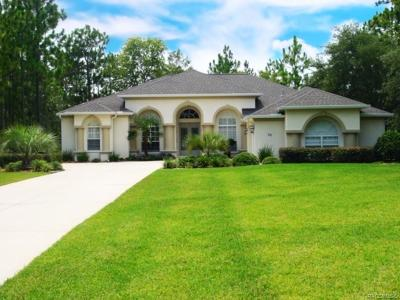 Citrus County Single Family Home For Sale: 20 Glenridge Boulevard