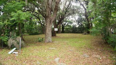 Volusia County Residential Lots & Land For Sale: 345 Wilson Avenue