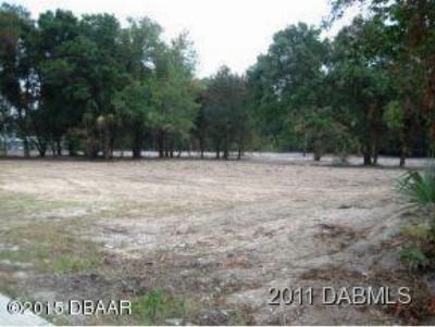 Volusia County Residential Lots & Land For Sale: 1171 S Nova Road