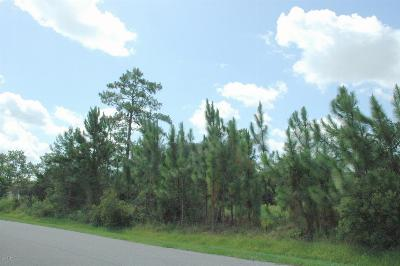 Spruce Creek, Spruce Creek Estates, Spruce Creek Farms, Spruce Creek Fly In, Spruce Creek Village Residential Lots & Land For Sale: 2625 Slow Flight Drive
