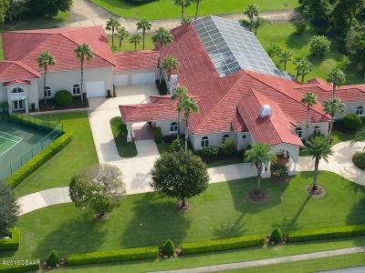 Spruce Creek Fly In Single Family Home For Sale: 2540 Taxiway Echo