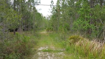 Volusia County Residential Lots & Land For Sale: 3656 Conifer Lane
