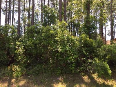 Palm Coast, Flagler Beach Residential Lots & Land For Sale: 19 Botany Lane