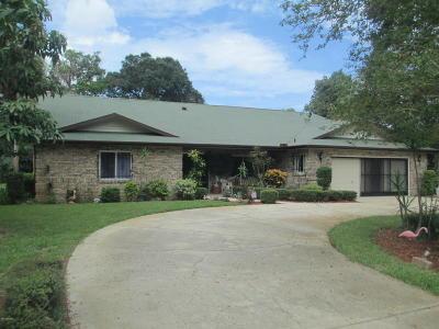 Ormond Beach Single Family Home For Sale: 36 Plaza Grande Avenue