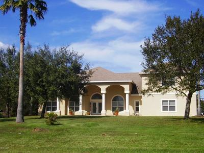 Port Orange Single Family Home For Sale: 260 Quiet Trail Drive
