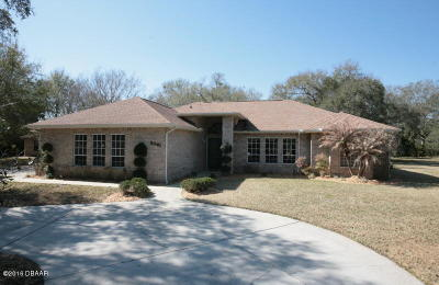 Port Orange Single Family Home For Sale: 2041 Red Robin Drive