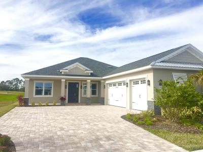 New Smyrna Beach Single Family Home For Sale: 2818 Sienna View Terrace Court Terrace