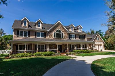 Port Orange Single Family Home For Sale: 753 Renegade Lane