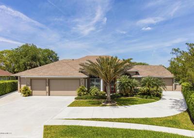 New Smyrna Beach Single Family Home For Sale: 128 Mangrove Estates Circle