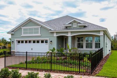 Hunters Ridge Single Family Home For Sale: 9 Huntington Place