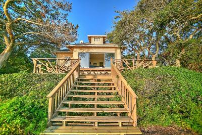 Ponce Inlet, South Daytona, Wilbur-by-the-sea Single Family Home For Sale: 2063 S Palmetto Avenue