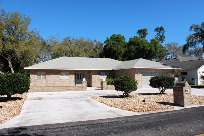 Spruce Creek Fly In Single Family Home For Sale: 41 Lazy Eight Drive