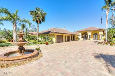 Ormond Beach Single Family Home For Sale: 765 N Beach Street