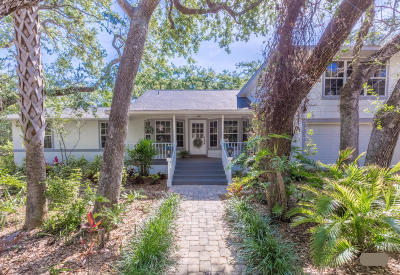 Ponce Inlet Single Family Home For Sale: 4875 Sailfish Drive