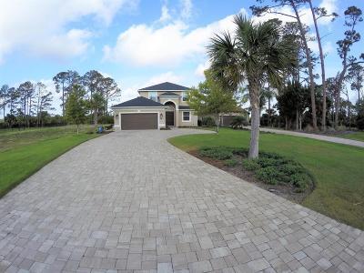 Palm Coast Plantation Single Family Home For Sale: 36 Heron Drive