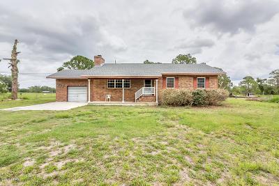 New Smyrna Beach Single Family Home For Sale: 603 Rasley Road