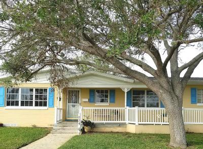 Volusia County Single Family Home For Sale: 834 Peninsula Drive
