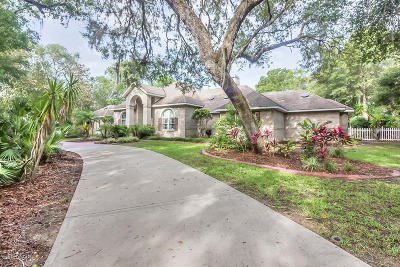 Port Orange Single Family Home For Sale: 6220 Shoreline Drive