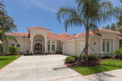 Palm Coast Single Family Home For Sale: 20 N Waterview Drive