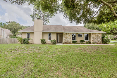 Volusia County Single Family Home For Sale: 116 Sea Duck Drive