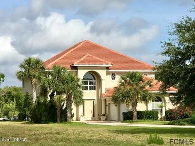 Palm Coast Plantation Single Family Home For Sale: 128 Heron Drive