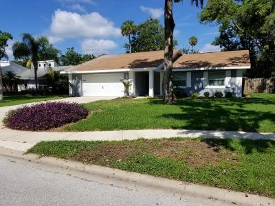 Volusia County Single Family Home For Sale: 928 Sand Crest Drive
