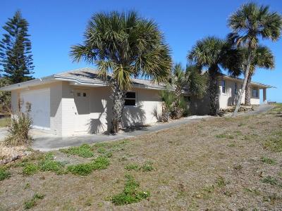 New Smyrna Beach Single Family Home For Sale: 1211 N Atlantic Avenue