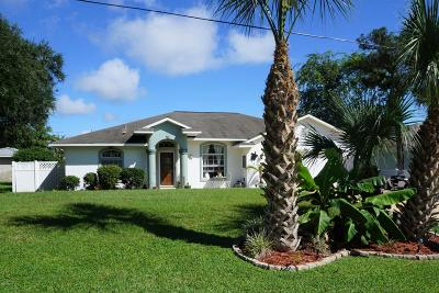 Flagler Beach Single Family Home For Sale: 614 Cumberland Drive
