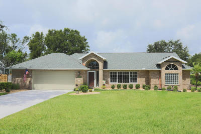 Volusia County Single Family Home For Sale: 5766 White Acres Lane