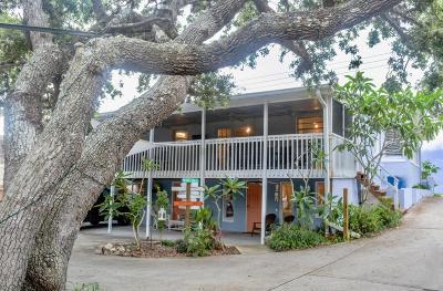 Daytona Beach Single Family Home For Sale: 3045 S Peninsula Drive