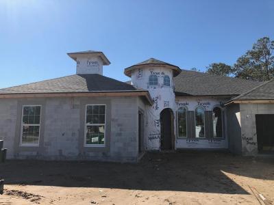 Breakaway Trails Single Family Home For Sale: 14 Tomoka Ridge Way